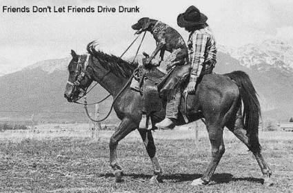 dontt-drive-drunk.jpg