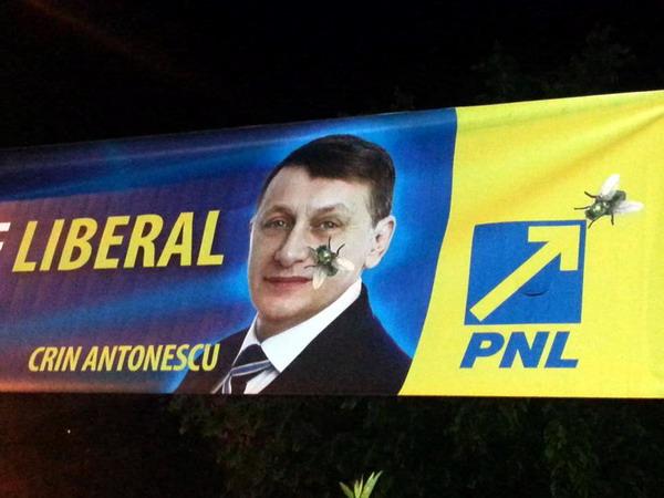 Musca-liberala-Crin-Antonescu